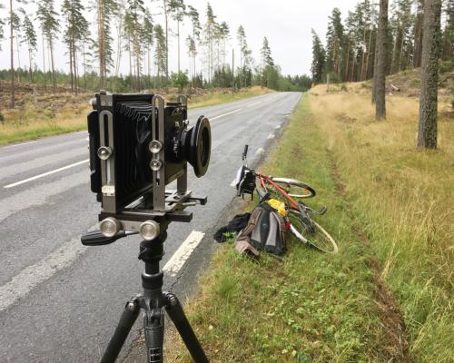 4x5 Kamera am Waldrand aufgebaut
