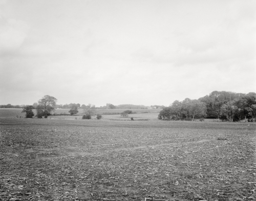 Abgeernetetes Feld bei Halskov auf Falster, Dänemark. Blick Richtung Bregninge