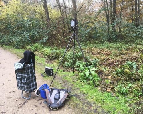 4x5 Kamera am Auwald bei Bergedorf aufgebaut.