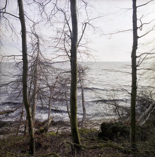 Die Ostsee von der Steilküste bei Skjoltrup aus