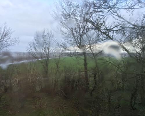 Am Morgen nach dem Sturm Sabine auf Falster. Blick in den Garten.