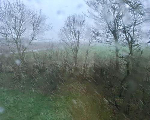 Garten des Falsterhus, Schneeschauer am Morgen