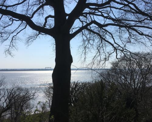 Blick auf die Elbe von Baurs Park aus in Blankenese