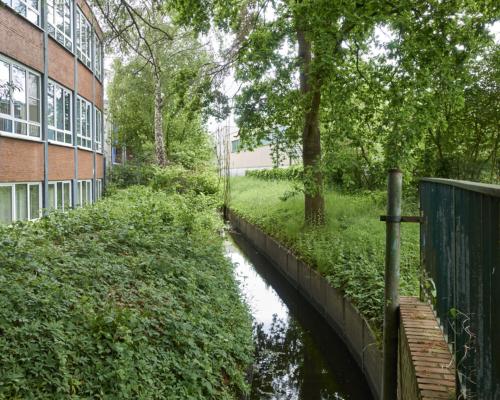 Die Mühlenau im Eidelstedter Gewerbegebiet