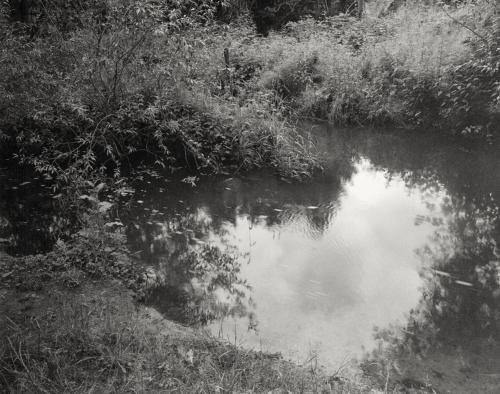 Zusammenfluß von Mühlenau und Kollau. Aufnahme analoges Großformat 4x5 schwarzweiß