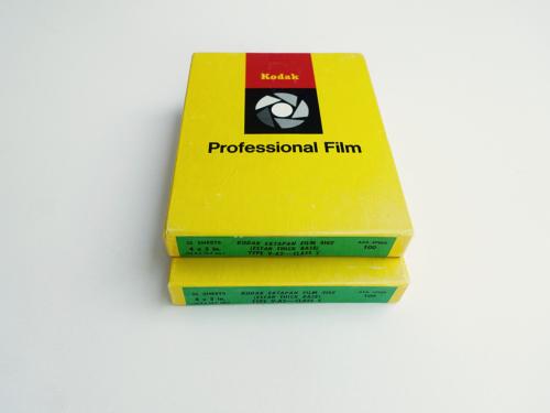 Kodak Ektapan Film 4162 im Format 4x5. Exp. 01/1974