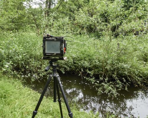 Kamera an der Mühlenau/Kollau