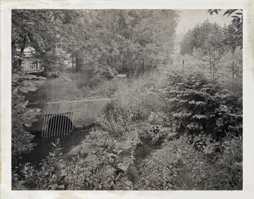 An der Mühlenau nahe Farnhornstieg, Aufnahme 4x5 analoges Großformat, weiter bearbeitet in Hipstamatic