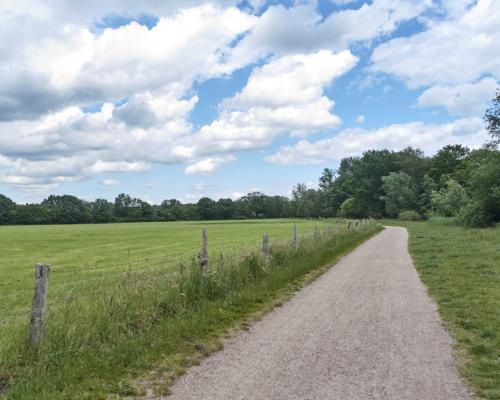In der Eidelstedter Feldmark