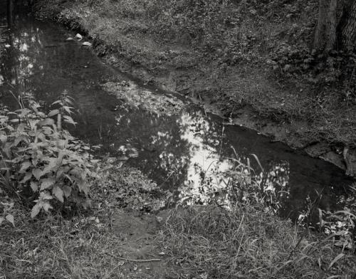 Die Kollau in der Eidelstedter Feldmark. Aufnahme im analogen Großformat 4x5 in Schwarzweiß