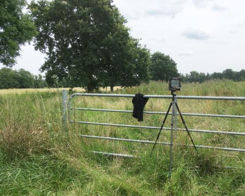 Kamera aufgebaut in der Eidelstedter Feldmark