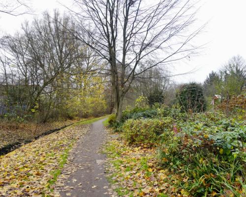 Herbstlicher Weg an der Düngelau in Hamburg Stellingen