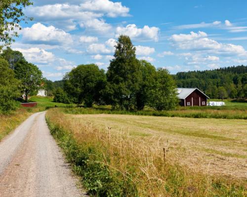 Schwedische Sommerlandschaft bei Karstorp 2016