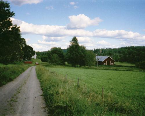 Schwedische Sommerlandschaft bei Karstorp 2003