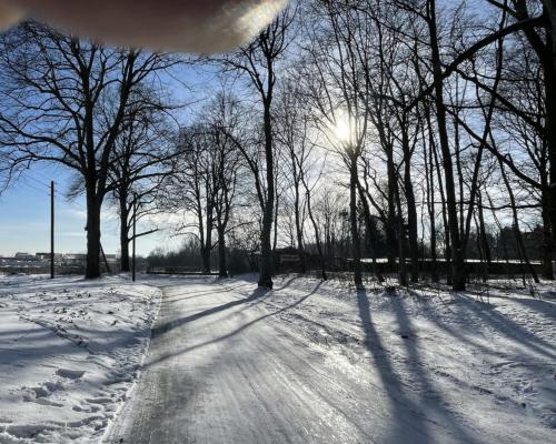 Am nordöstlichen Rand des Volksparks Altona, im Schnee