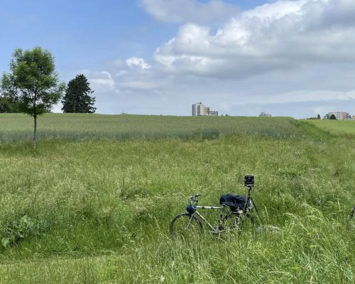 Mit der Kamera im Feld hinter Praunheim