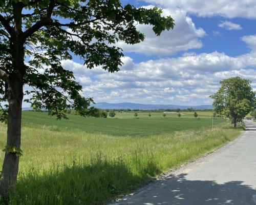 Auf Berkersheim zu