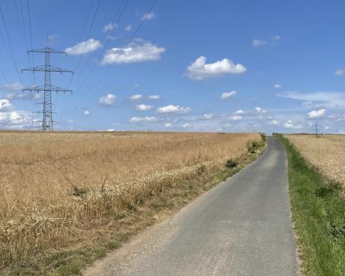 Feldweg bei Steinbach