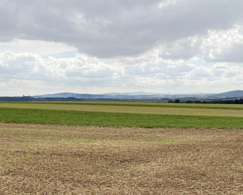 Landschaft der Wetterau. Bei Muschenheim.